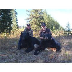 Guided Spot & Stalk Bear Hunt in British Columbia for 1 Hunter with 1 Observer