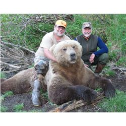 9-Day Alaska Peninsula Brown Bear Hunt for One Hunter