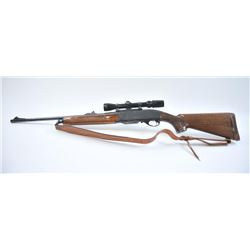 Remington 742 Woodsmaster in .30-06 caliber rifle mounted with Bushnell