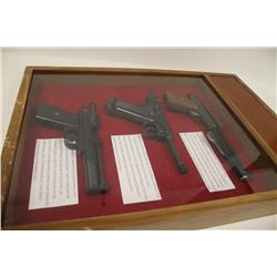Collection of 6 pellet guns in 2 portable displays as