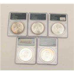 Mixed Lot of 5 MS-63 Dollars, P.C.G.S. graded 1889-0, 1886,