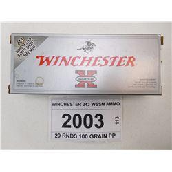 WINCHESTER 243 WSSM AMMO