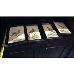 Ardley Hall Hand Painted Bird Picture
