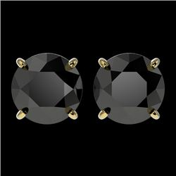 2.60 CTW Fancy Black VS Diamond Solitaire Stud Earrings 10K Yellow Gold - REF-52K8W - 36685