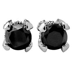 2.0 CTW VS Certified Black & White Diamond Solitaire Stud Earrings 14K White Gold - REF-64K2W - 1185