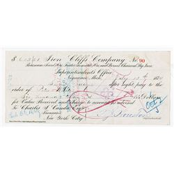 "Iron Cliffs Co., 1874 Draft or Check with Peter White's Famous ""Egg Signature"" on back."