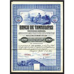 Banco de Tamaulipas, 1905 Specimen Stock Certificate.