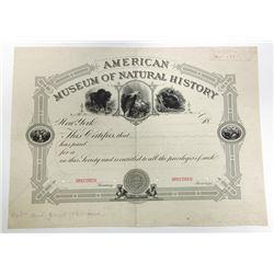 American Museum of Natural History 1883 Specimen Membership Certificate.