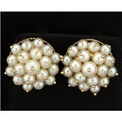 Akoya Natural Pearl Cluster Earrings in 14k Gold