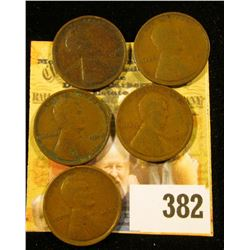 5 1909 VDB WHEAT PENNIES