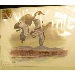 "2005 Fleetwood hand autographed print of a pair of Green-winged Teals by Don Balke, 10.5"" x 13.25""."