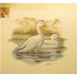 "1991 Fleetwood hand autographed print of a pair of Ross' Geese at Rest by Don Balke, 10.5"" x 13.25""."