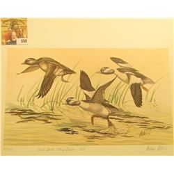 1979 Iowa Duck Stamp Buffleheads by Andrew D. Peters, no. 614/750. 12.5  x 16.5 , Hand autographed.