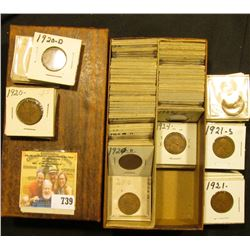 "6"" long Double Row Box of Lincoln Cents in 1 1/2"" holders dating 1920P, D, S up to 1929. Many decent"