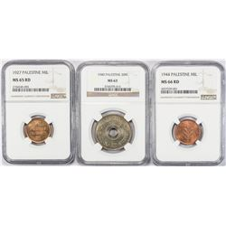 PALESTINE:LOT of 3 NGC graded coins