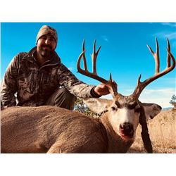 5 Day Trophy Mule Deer Hunt Unit in 17 New Mexico for 1 Hunter