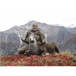 British Columbia – 14 Day – Stone Sheep, Wolf and Black Bear Hunt for One Hunter