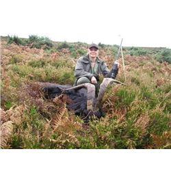 *Ireland – 3 Day/4Nights – Ibex Hunt for One Hunter