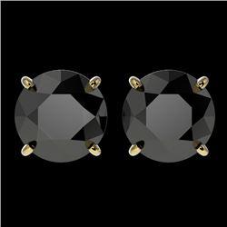 3 CTW Fancy Black VS Diamond Solitaire Stud Earrings 10K Yellow Gold - REF-64F3N - 33125