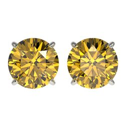 3 CTW Certified Intense Yellow SI Diamond Solitaire Stud Earrings 10K White Gold - REF-555M2F - 3312