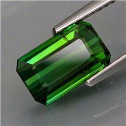 Natural Bluish Green Tourmaline 2.71 Cts