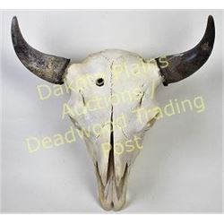"""Large bleached buffalo skull horn caps, 22"""" tip to tip, good complete condition.  Est. 125-200"""