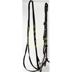 Complete Mexican bridle with silver inlaid bit and conchos, headstall with stamped floral pattern.