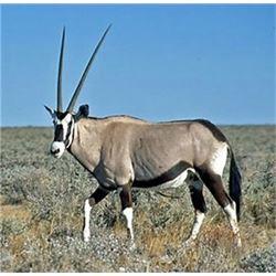Okatjeru Hunting Safaris