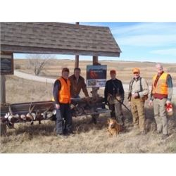 Pheasant hunt for 4 with Rocky Mountain Roosters