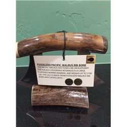 Walrus Rib Bone Carving