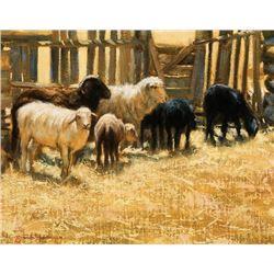 Bodelson, Dan - Study for Sheep Pen