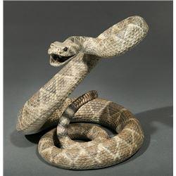 Pettit, Bryce - Rattlesnake