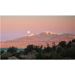 Hurley, Wilson - A Full Moon at Sunrise on Mount Taylor