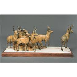 Sander, Sherry - Antelope at Ingomar