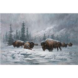 Fanning, Larry - Colorado Buffalo