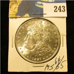 1887 Morgan $  Ms 64+