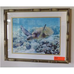 "Framed Photo Print: Honu 17"" x 21"""