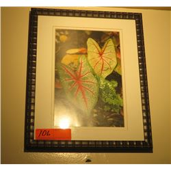 "Framed Print: Tropical Botanical Leaves 15"" x 12"""