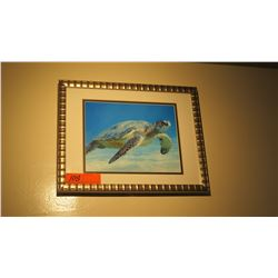 "Framed Photo Print: Honu 12"" x 15"""