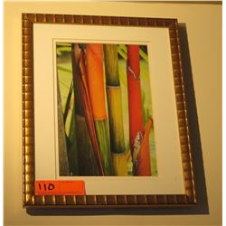 "Framed Print: Red Bamboo 15"" x 12"""
