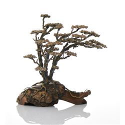 Bronze/Copper Tree Atop A Burl Wood Root Base