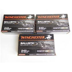 WINCHESTER FACTORY 243 WIN 55  GR BALLISTIC SILVERTIP AMMO
