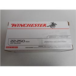 WINCHESTER 22-250 REMINGTON AMMO