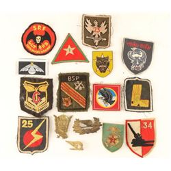 Group of Vietnam Military Pins & Patches