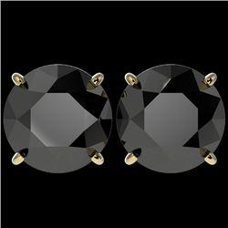 5 CTW Fancy Black VS Diamond Solitaire Stud Earrings 10K Yellow Gold - REF-117T8X - 33147
