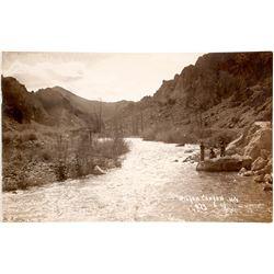 Rare Wilson's Canyon, NV Postcard