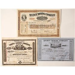 Three Different Quincy Mining Company Stock Certificates