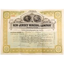 New Jersey Mineral Company Stock Certificate