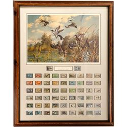 US Department of Interior Duck Stamps Yearly Collection with Signed Duck Stamp Painting
