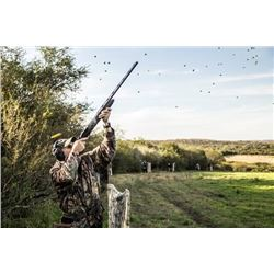 3-day Uruguay Dove Hunt for Two Hunters